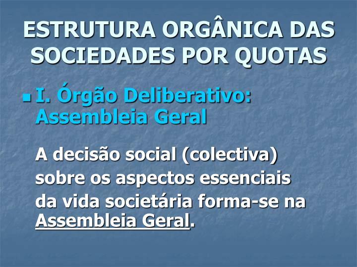 Estrutura org nica das sociedades por quotas1