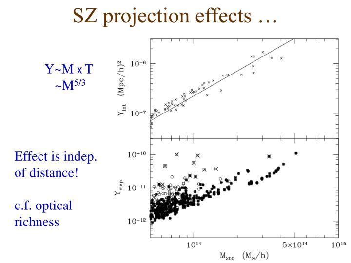 SZ projection effects …