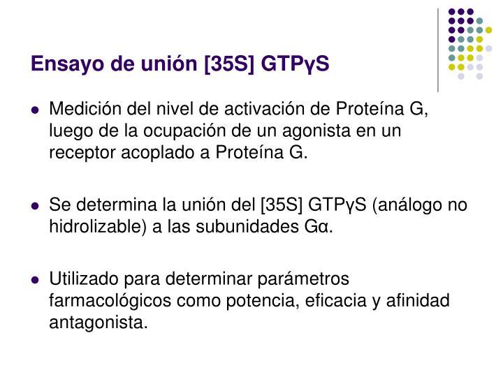 Ensayo de unión [35S] GTP