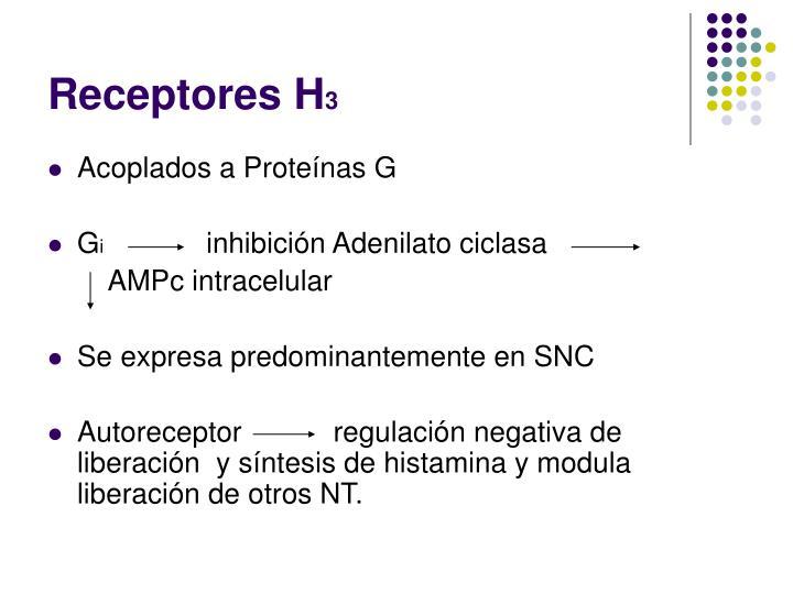 Receptores h 3