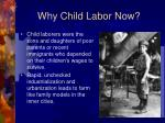 why child labor now