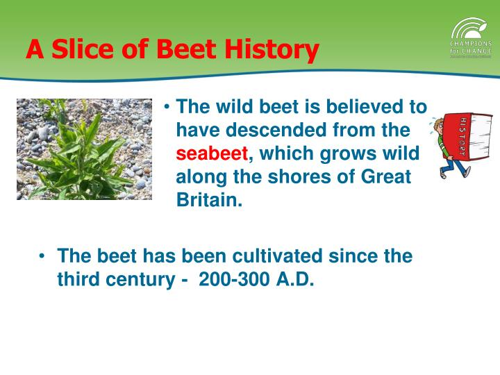 A Slice of Beet History