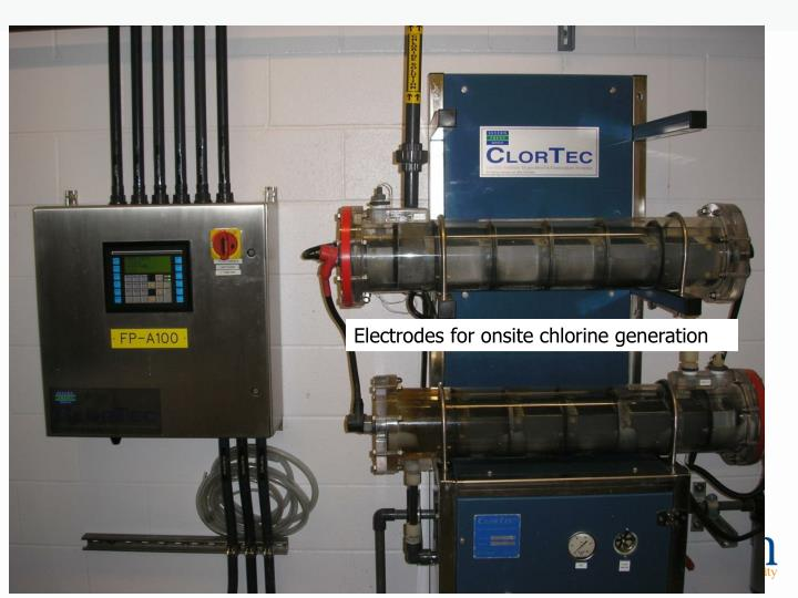 Electrodes for onsite chlorine generation