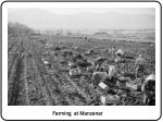 farming at manzanar