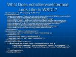 what does echoserviceinterface look like in wsdl