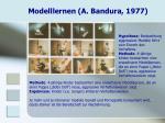 modelllernen a bandura 1977