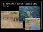 el barranc del carraixet ecosistema fluvial