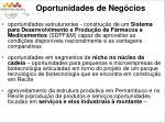 oportunidades de neg cios2
