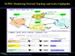 m pin monitoring network topology and active lightpaths