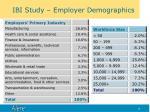 ibi study employer demographics
