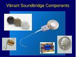 vibrant soundbridge components