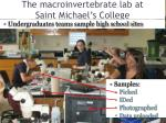 the macroinvertebrate lab at saint michael s college
