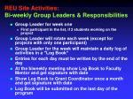 reu site activities bi weekly group leaders responsibilities