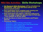 reu site activities skills workshops