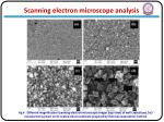 scanning electron microscope analysis