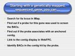 starting with a genetically mapped sequenced gene you can