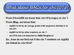 what about bacs for chc101a