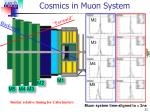 cosmics in muon system