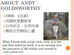 about andy goldsworthy
