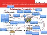 collaborative projects life cycle1