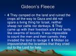 gideon s fleece1