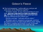 gideon s fleece3