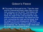 gideon s fleece4