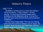 gideon s fleece6