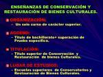 ense anzas de conservaci n y restauraci n de bienes culturales
