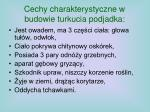cechy charakterystyczne w budowie turkucia podjadka