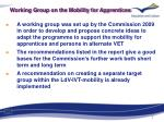 working group on the mobility for apprentices