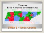 lwia 3 knox county