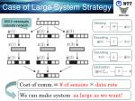 case of large system strategy