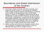 boundaries and global distribution of the tundra