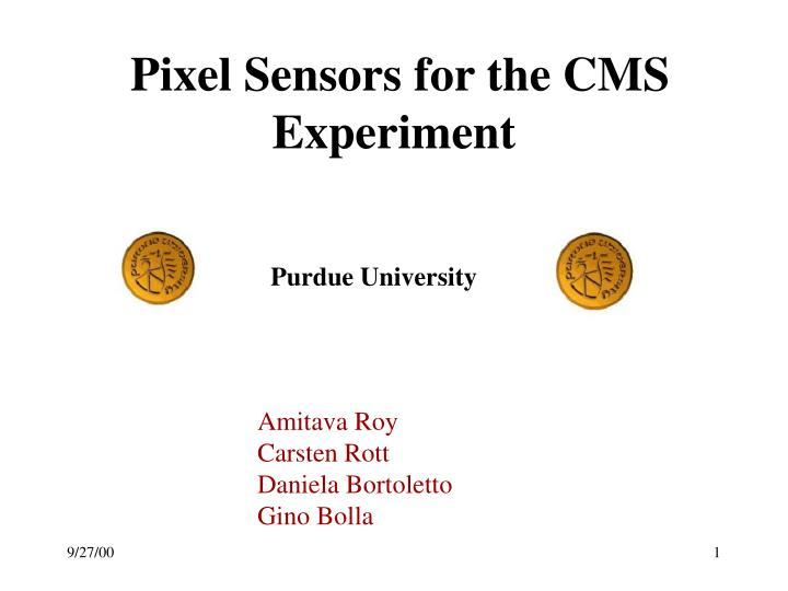 pixel sensors for the cms experiment n.