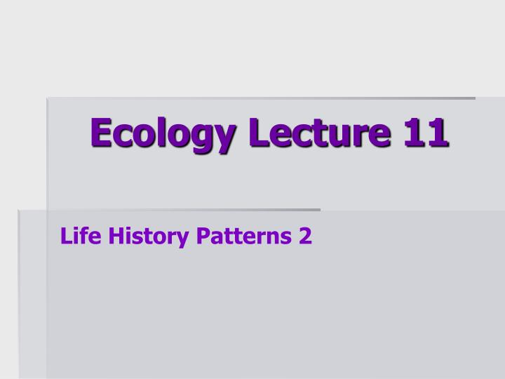 ecology lecture 11 n.
