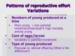 patterns of reproductive effort variations