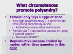what circumstances promote polyandry