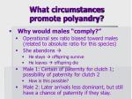 what circumstances promote polyandry1