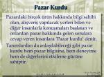 pazar kurdu