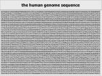 decodificaci del genoma
