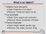 what is an object1