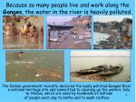 because so many people live and work along the ganges the water in the river is heavily polluted