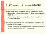 blat search of human hmgb3
