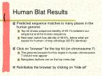 human blat results
