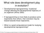 what role does development play in evolution