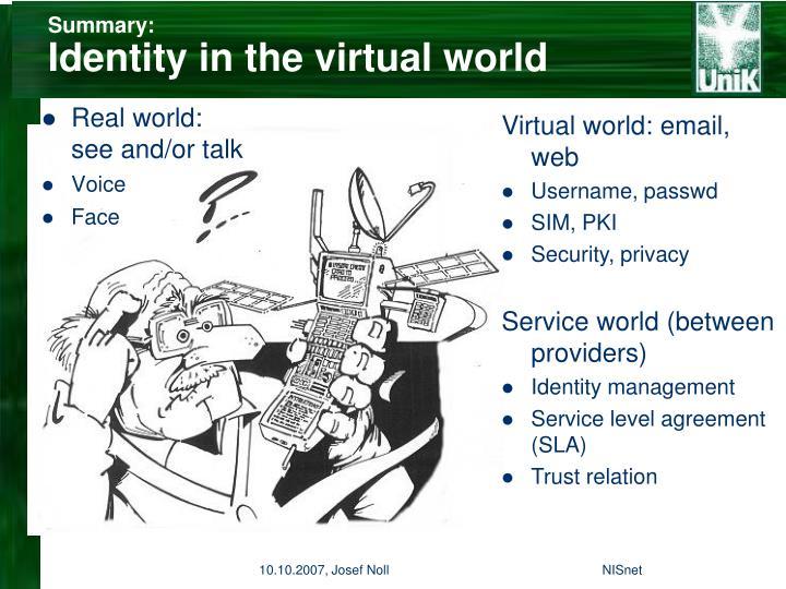 Summary identity in the virtual world