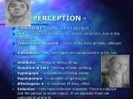 perception3
