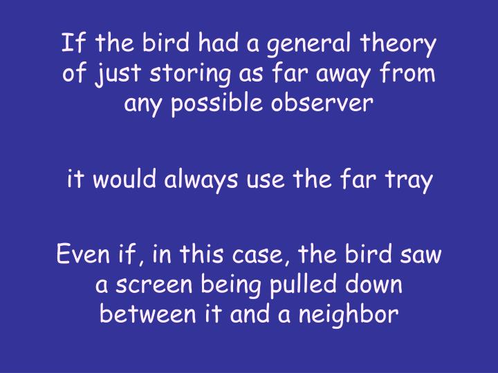 If the bird had a general theory of just storing as far away from any possible observer