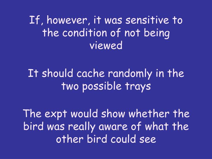 If, however, it was sensitive to the condition of not being viewed